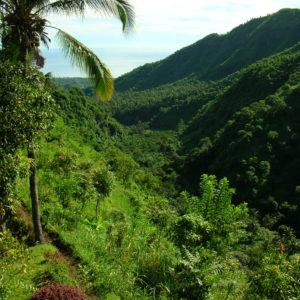 Gaia Oasis ABASAN Mountain Resort view